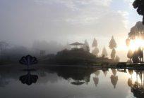 পর্যটনের প্রসারে উত্তরবঙ্গে একাধিক প্রকল্পের শিলান্যাস মুখ্যমন্ত্রীর