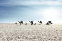 winter-destinations-part-four-from-rann-of-kutch-to-coastal-gujarat